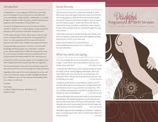 Delightful Pregnancy & Birth Services brochure front